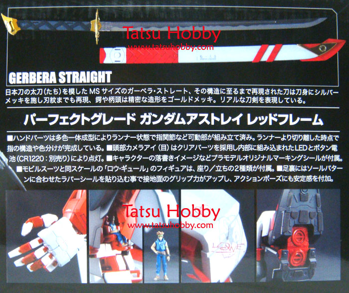 PG Gundam Astray Red Frame - Click Image to Close